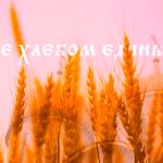 Слово епископа Борисовского и Марьиногорского Вениамина в Неделю сыропустную (Прощеное воскресенье), воспоминание Адамова изгнания