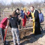 В Руденской вспомогательной школе-интернате учащиеся и волонтеры посадили деревья